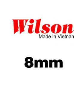Sàn gỗ Wilson 8mm Bản lớn