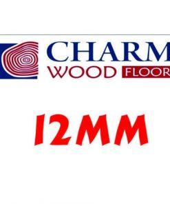 Charm 12mm