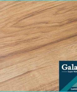 san go galamax bg 222 scaled