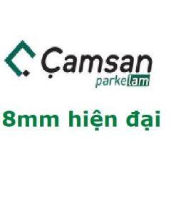 Sàn Gỗ Camsan 8mm điện đại