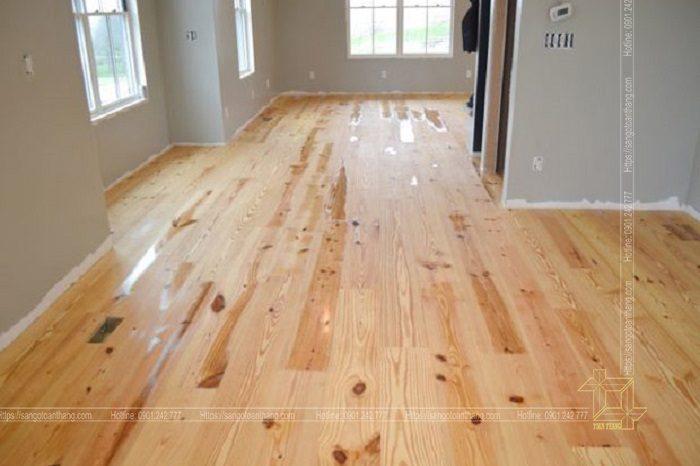 Sàn gỗ thông rất ấm áp
