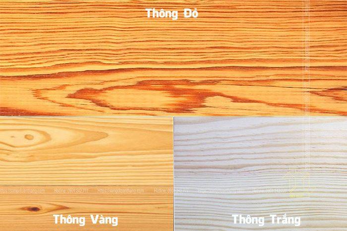 Sự khác biệt 3 loại gỗ thông đó là màu sắc